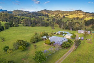 """Carinya"" 916 Mooral Creek Road, Strathcedar, NSW 2429"