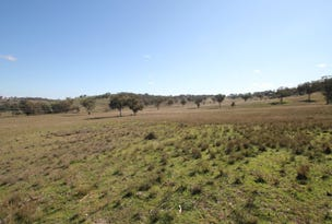 Lot 1 Savage Street, Quirindi, NSW 2343