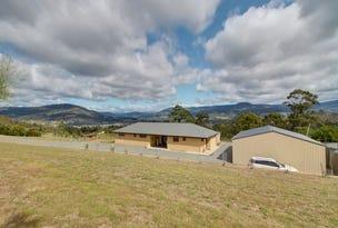 166 Knights Road, Huonville, Tas 7109
