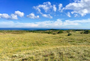 Lot 1 South Road, Nugara, Tas 7256
