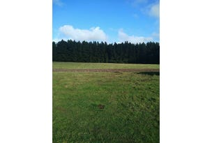 Beech Forest, address available on request