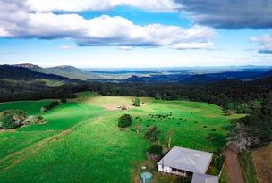 1234 Koppin Yarratt, Comboyne, NSW 2429