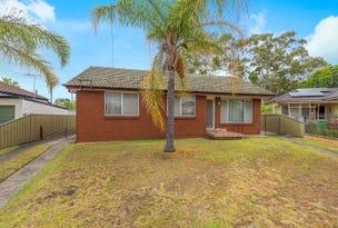 91 Jasmine Crescent, Cabramatta, NSW 2166