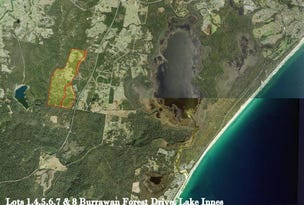 Lot 1 Burrawan Forest Drive, Lake Innes, NSW 2446