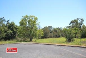 49-51 Primrose Street, Wingham, NSW 2429