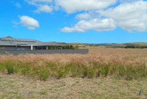Lot 110, 13 Henry Ct, Normanville, SA 5204