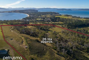 65 Roaring Beach Road, South Arm, Tas 7022