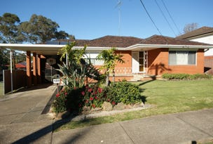 133 Frederick Street, Lalor Park, NSW 2147