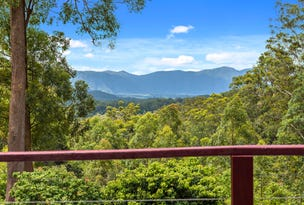 315 Boggy Creek Road, Bellingen, NSW 2454