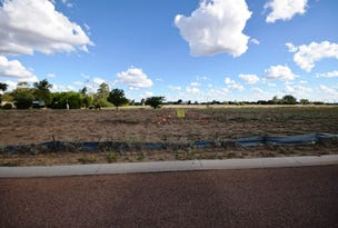 4 Little Curlew Court, Longreach, Qld 4730