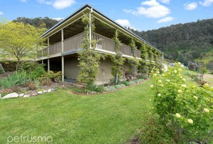 300 Top Swamp Road, Lachlan, Tas 7140