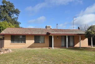 130 York St, Forbes, NSW 2871