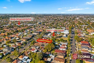 22 Auburn Rd, Berala, NSW 2141