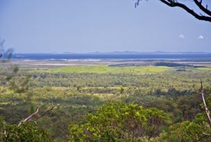 428 Old Post Office Road, Cawarral, Qld 4702