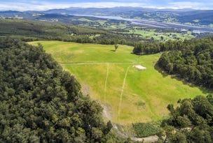 141865/1 End of Barretts Road, Upper Woodstock, Tas 7150