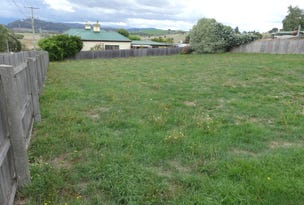 33 Tower Hill Street, Deloraine, Tas 7304