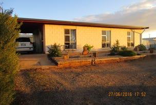 45 Edmund Terrace, Murray Bridge, SA 5253