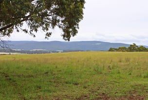 101 Middle Spur Road, Tumbarumba, NSW 2653