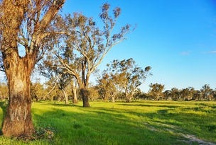 Lot 10 Sturt Highway, Gillenbah, Narrandera, NSW 2700