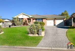 3 Wattle Green Place, Narellan Vale, NSW 2567