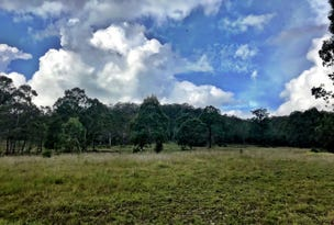 Lots 2 & 3  Black Camp Road, Nooroo, NSW 2415