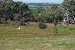 Section 187 Flinders Highway, Wangary, SA 5607
