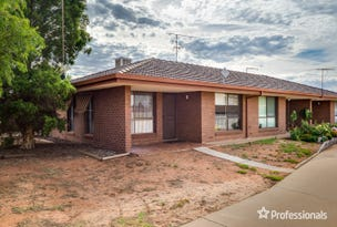 Unit 1/646 Koorlong Avenue, Irymple, Vic 3498