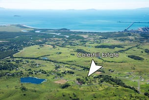 Lot 1 Coleshill Drive, Alligator Creek, Qld 4740