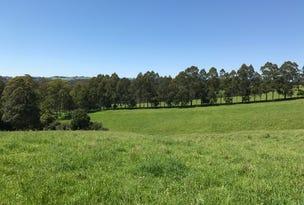 383 Emersons Road, Dorrigo, NSW 2453