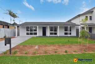 12 Moore Street, Oak Flats, NSW 2529