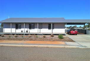 351 Timmings Road, Perenjori, WA 6620