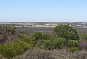 LOT 9680 Geraldton-Mount Magnet Road, Wicherina, WA 6532