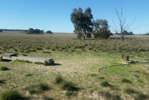Lot 4 Winchester South Rd, Carnamah, WA 6517