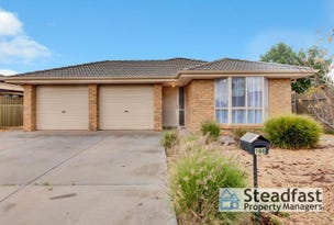 166 President Avenue, Andrews Farm, SA 5114