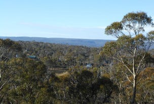 Lot 585 Little Dog Court, Miena, Tas 7030