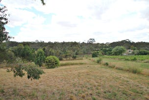 Lot 3 Govt Road, Seipelt Lane, Penwortham, SA 5453