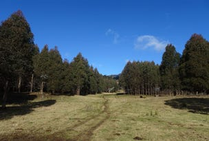 . Azels Road, Mole Creek, Tas 7304