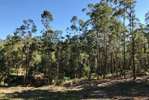 42 Missing Link Rd, Ilkley, Qld 4554