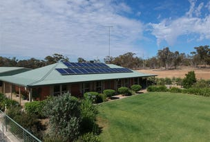 3147 MERRENGREEN RD, West Wyalong, NSW 2671