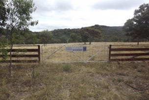 Lots 352 & 359 Stannum Road, Torrington, NSW 2371