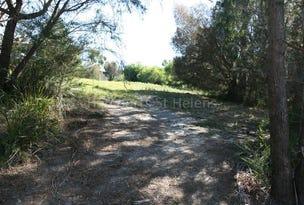 41 Treloggen Drive, Binalong Bay, Tas 7216