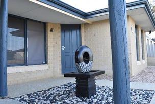 9  Mistletoe Drive, Banksia Grove, WA 6031