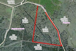 Lot 5 Rabbit Fence Road, Dalveen, Qld 4374