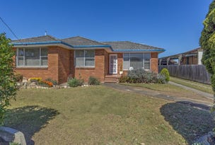 47 Collinson St, Tenambit, NSW 2323
