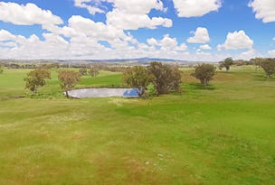 2818 Mitchell Highway, Molong, NSW 2866