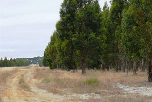 Lot 4 Savage Road, Neridup, WA 6450