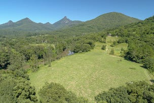 884 Kyogle Road, Mount Warning, NSW 2484