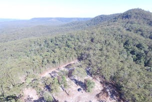 Lot 101 Lower Bugong Road, Budgong, NSW 2577
