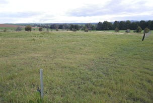 Lot 170 West Terrace, Wirrabara, SA 5481