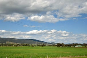 Lot 202 Middlebrook Road, Scone, NSW 2337